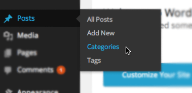 Add Custom Categories on Wordpress