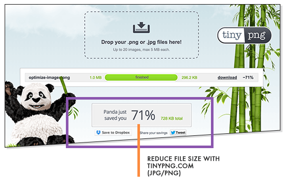 Reduce File Size TinyPNG