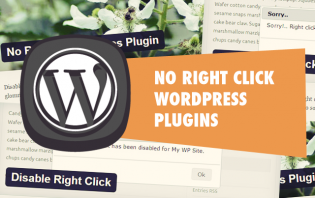 no right-click wordpress plugins
