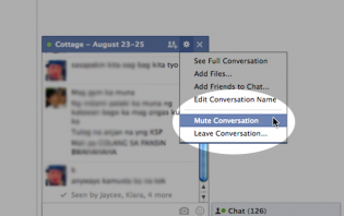 facebook: what is muting a conversation mean?
