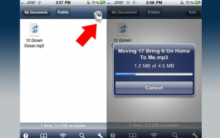 How to move Dropbox files on iPhone