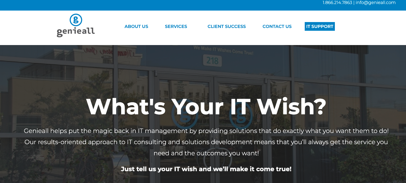 IT small business consulting Genie All